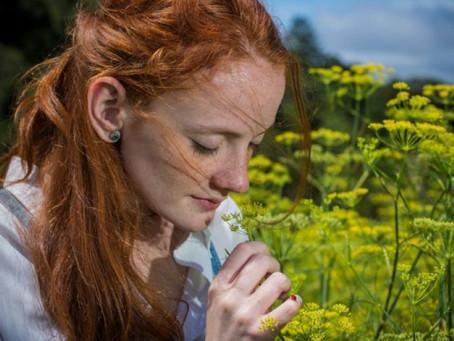 O potencial do olfato nas memórias e nas emoções
