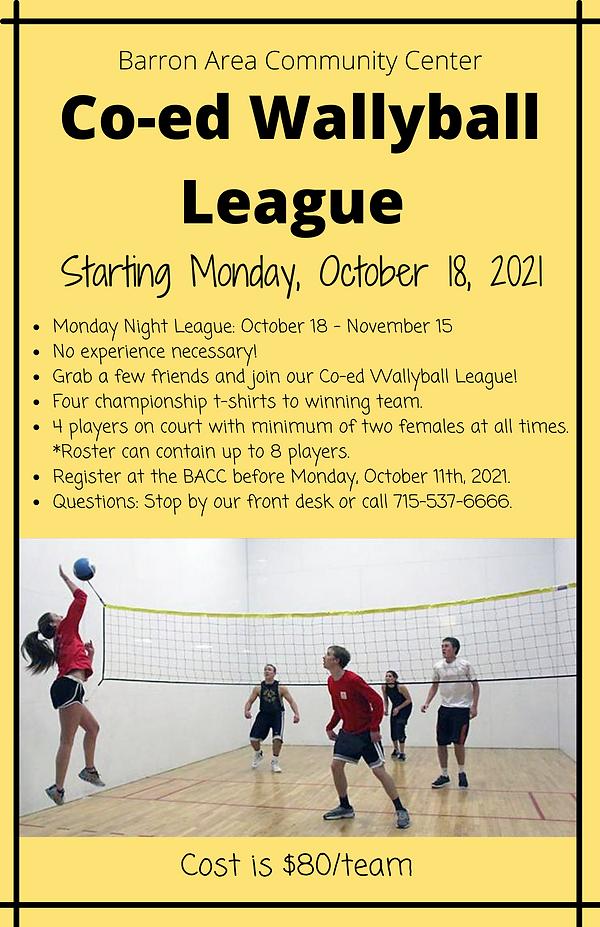Co-ed Wallyball League-2.png