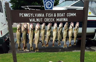 Fishing Charters on Lake Erie