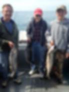 Walleye charters on Lake Erie