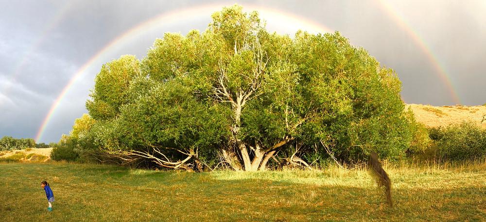 Double Rainbow after wedding rainstorm, Lander, Wyoming,