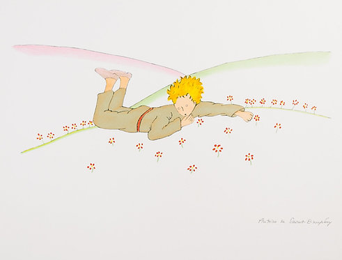 Le Petit Prince parmi les fleurs (The Little Prince Lying On The Grass)