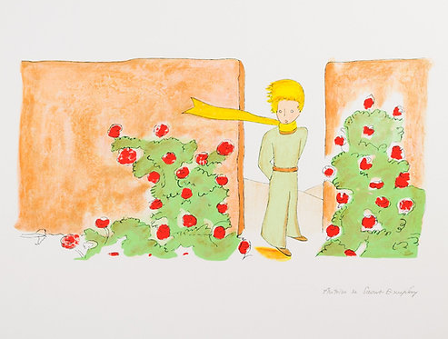 Le Petit Prince dans le jardin des roses (The Little Prince In The Garden)