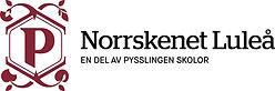 Pysslingen_Norrskenet-Luleå_L_RGB.jpg