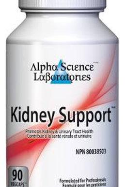 Kidney Support