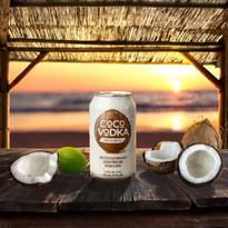 Sunset Coco copy.jpg