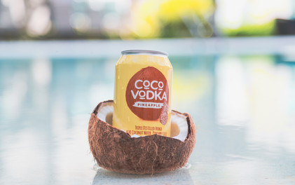 CoCo Pineapple in a Coconut.jpg