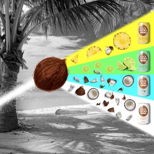 Coco Split Beam copy.png