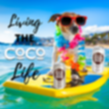 Living the CoCo Life.png