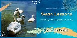 Swan Lessons Cover, twitter format.jpg