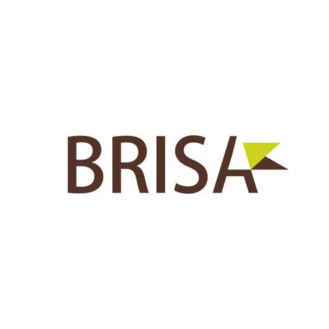 Brand design Brisa
