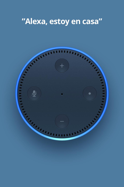 Alexa.png