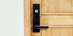 DOORLOCK on Wood Door.jpg
