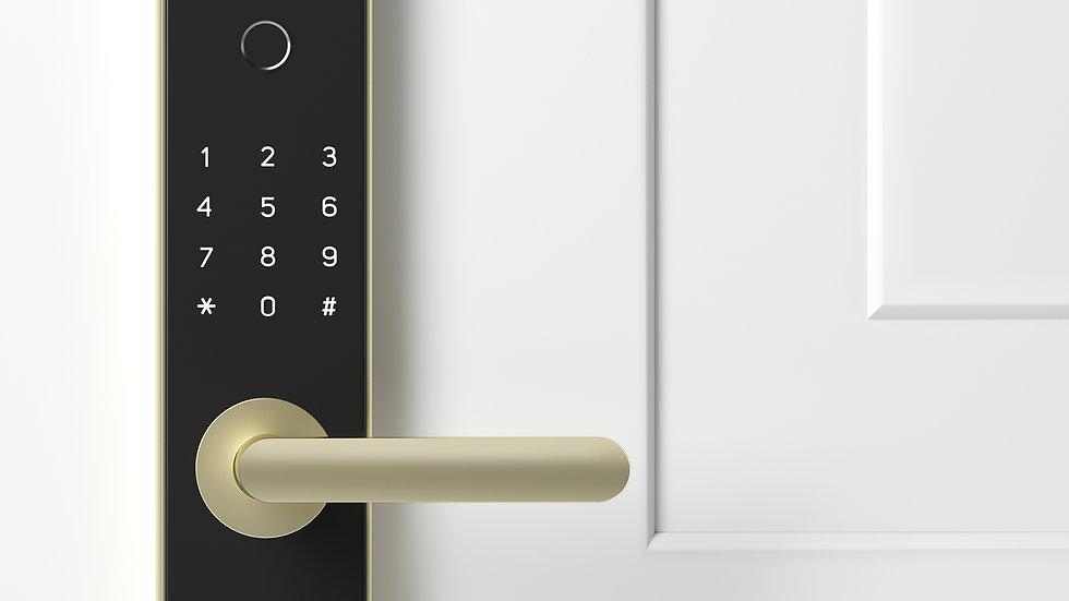 Doorlock White Door_Website.jpg