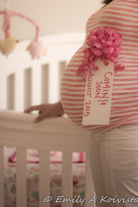 maternity photographer minneapolis