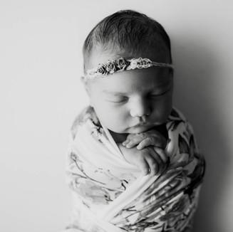 twin cities newborn photographer