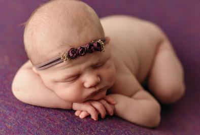 St. Paul/Minneapolis Newborn & Baby Photographer