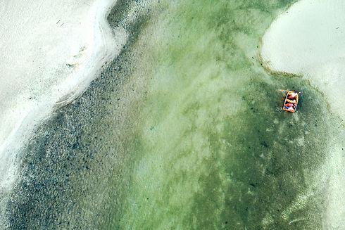 aerial_4.jpg