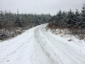 Snow Good For First Rally