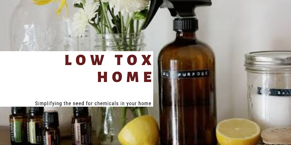 Low Tox Living Workshop