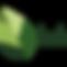 logo_transparent_512x512.png