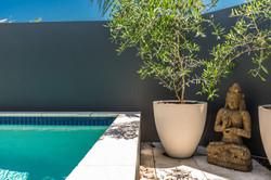 beach house pool gardens