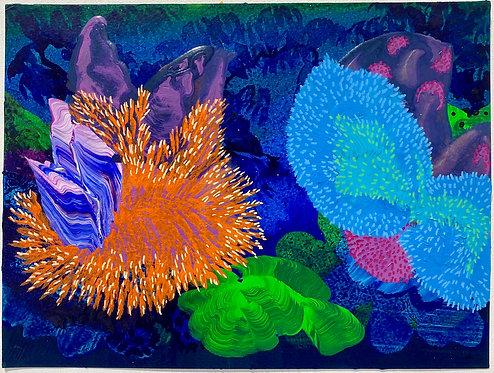 Orlanda Broom | Sea Plants