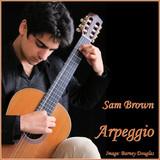 Sam Brown guitarist