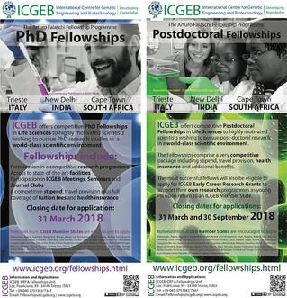 Bursaries & Scholarships