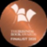 Finalist badge 2020-02.png