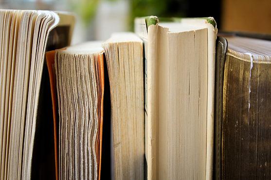recommandations livres anne sophie
