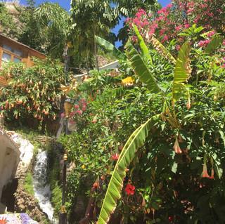 fresh water stream