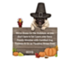 funny pug dog wearing pilgrim hat for Th
