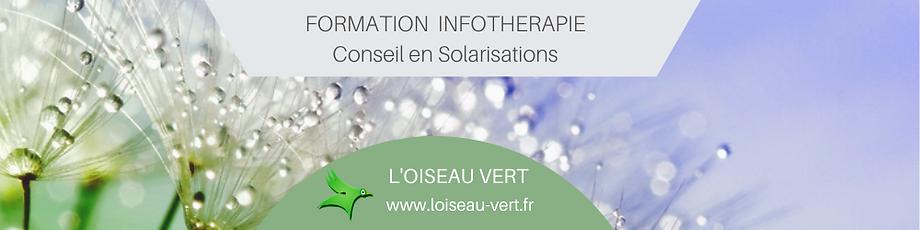 FORMATION INFOTHERAPIE Conseil en Solari