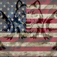 WolfPackFlag.jpg