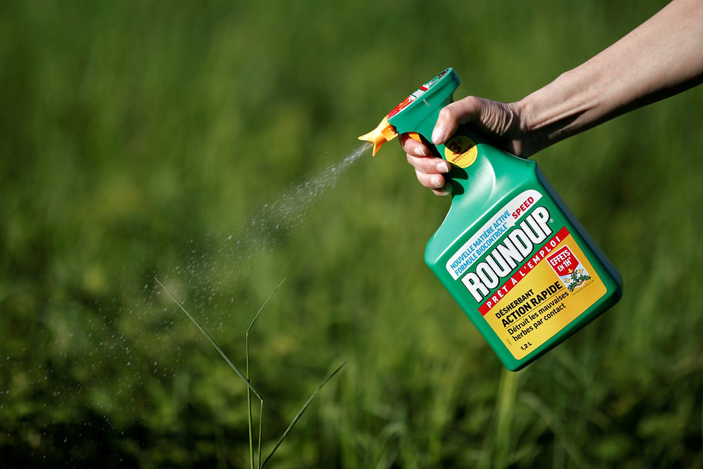 Roundup, Personal Injury, Cancer