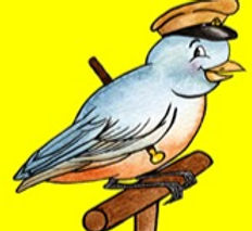wild bird seed_edited.jpg