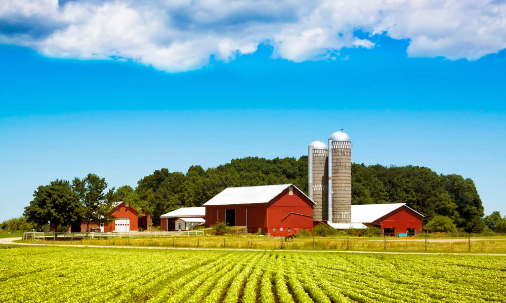 COVID-19-Relief_Small-Farms--1024x614.jp