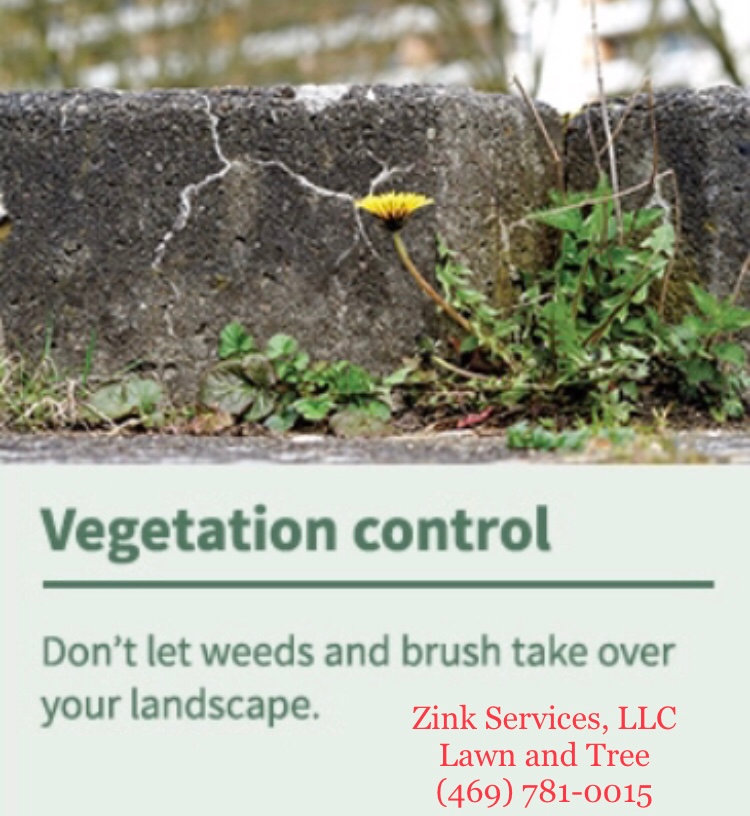 Weed prevention and control