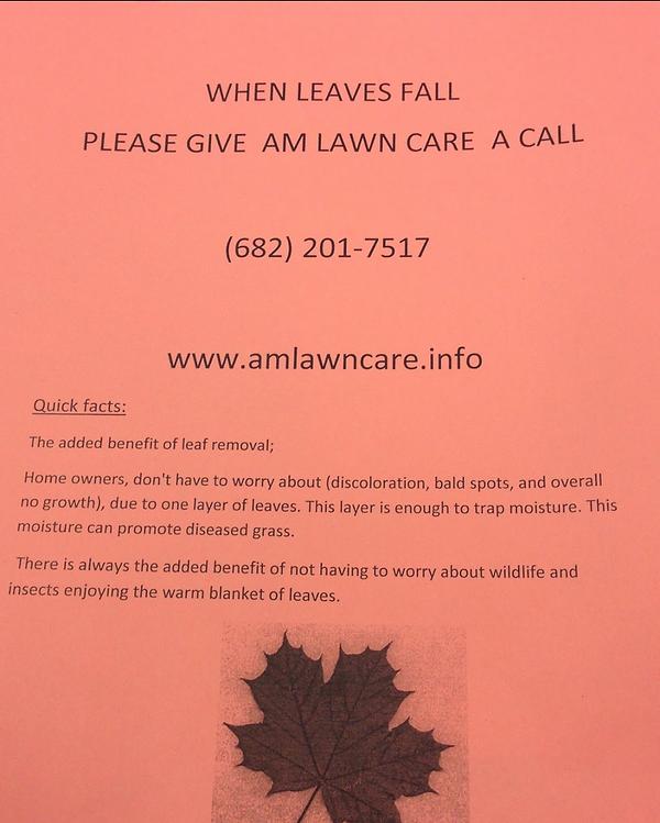Professional Lawn Care Near Me