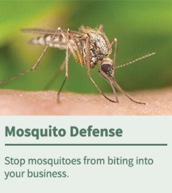 Mosquito Defense