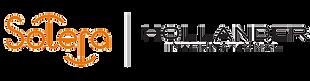 Hollander_International_Systems_Ltd_Logo