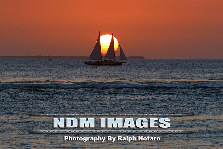 NDM95288.jpg