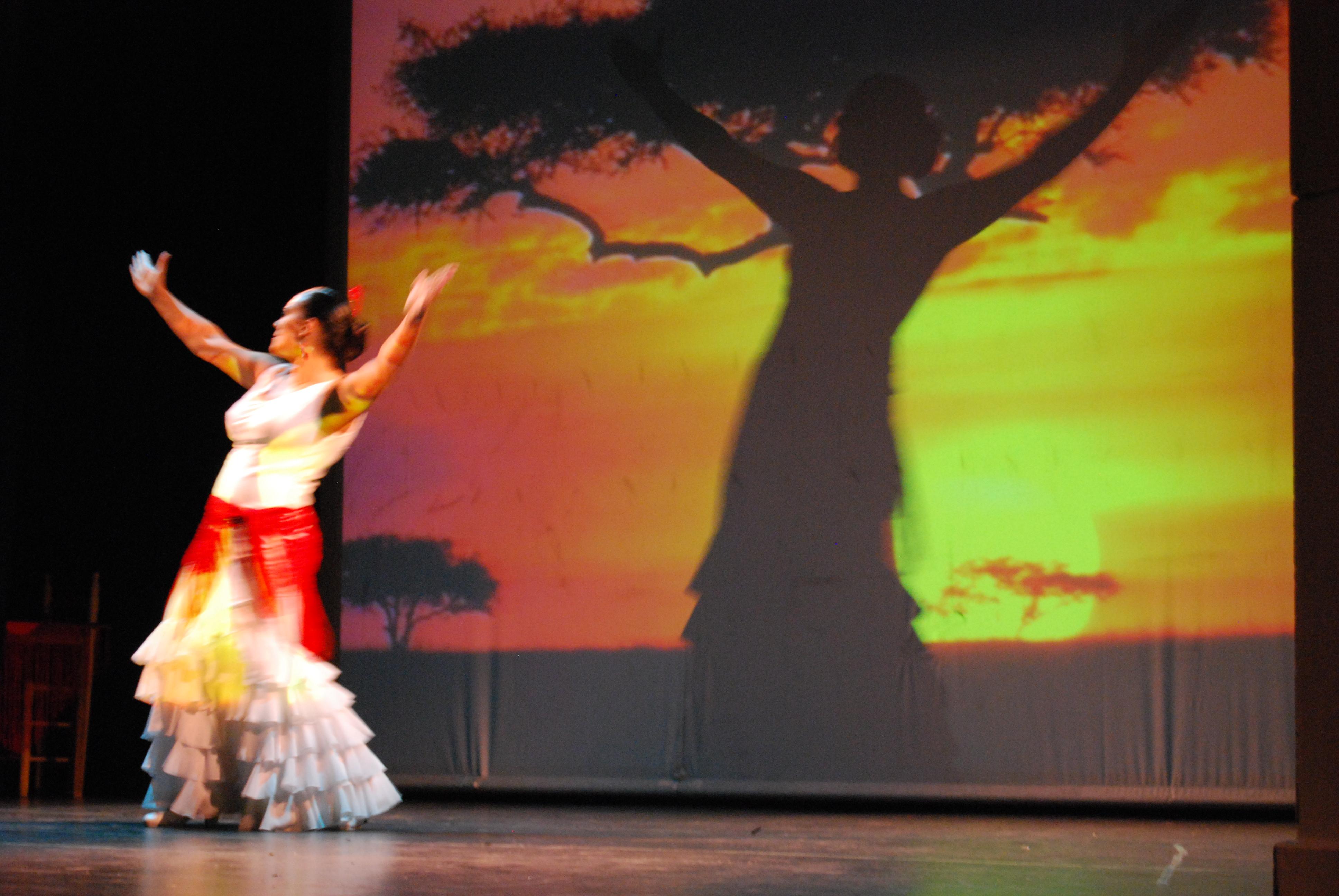 MI ARTE FLAMENCO POR SOMALIA 16