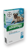 Advantage – אדוונטג' לכלב 4-10kg-01.png