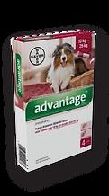 Advantage – אדוונטג' לכלב 10-25kg-01.png