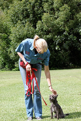 Tracey Murray - Dogschool Obedience