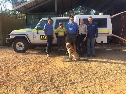 Edna - Cane Toad Detection Dog at Groote Eylandt