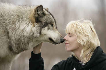 Tracey Murray with Wolf at Wolf Park in USA