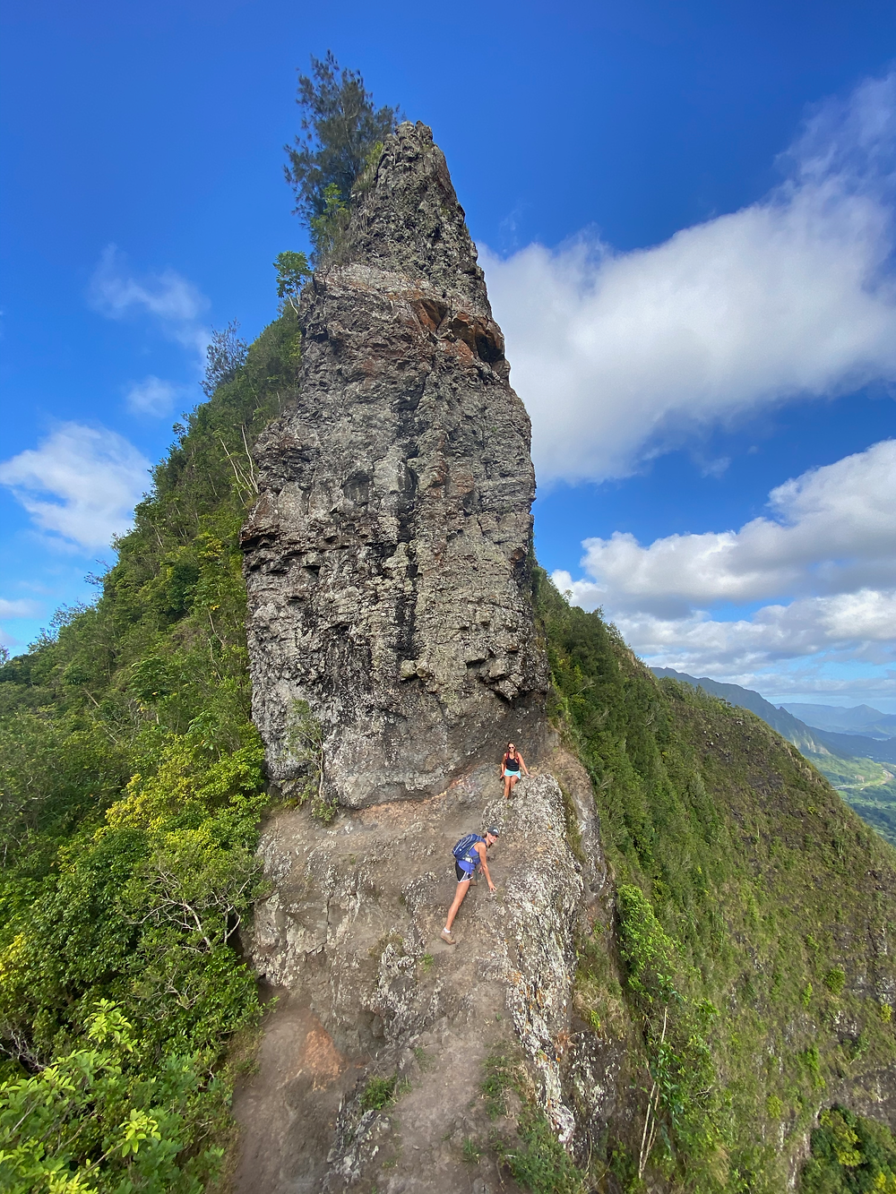 Pali Puka Oahu hikes things no one tells you about visiting Hawaii what to know about Oahu hiking on Oahu ridgeline hike